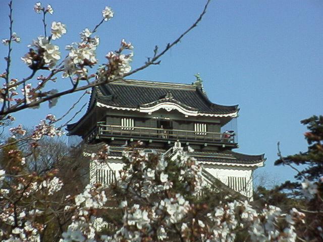 春の岡崎城